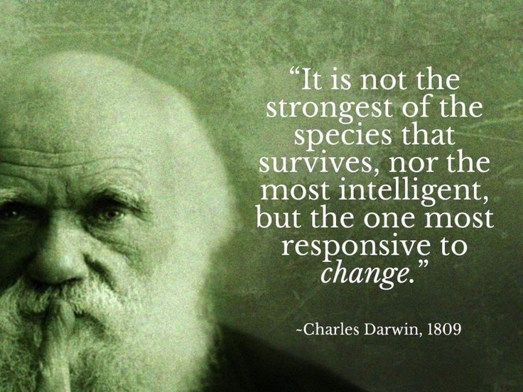 Darwin is an asshole consider